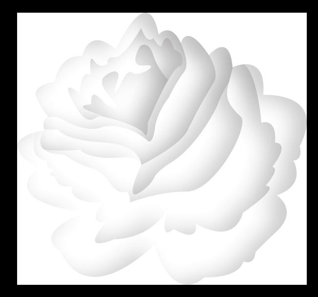 Fleur Intuitives